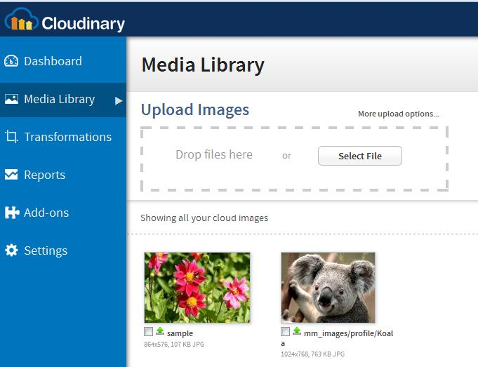 Image management using Spring & Cloudinary  – Code2Succeed